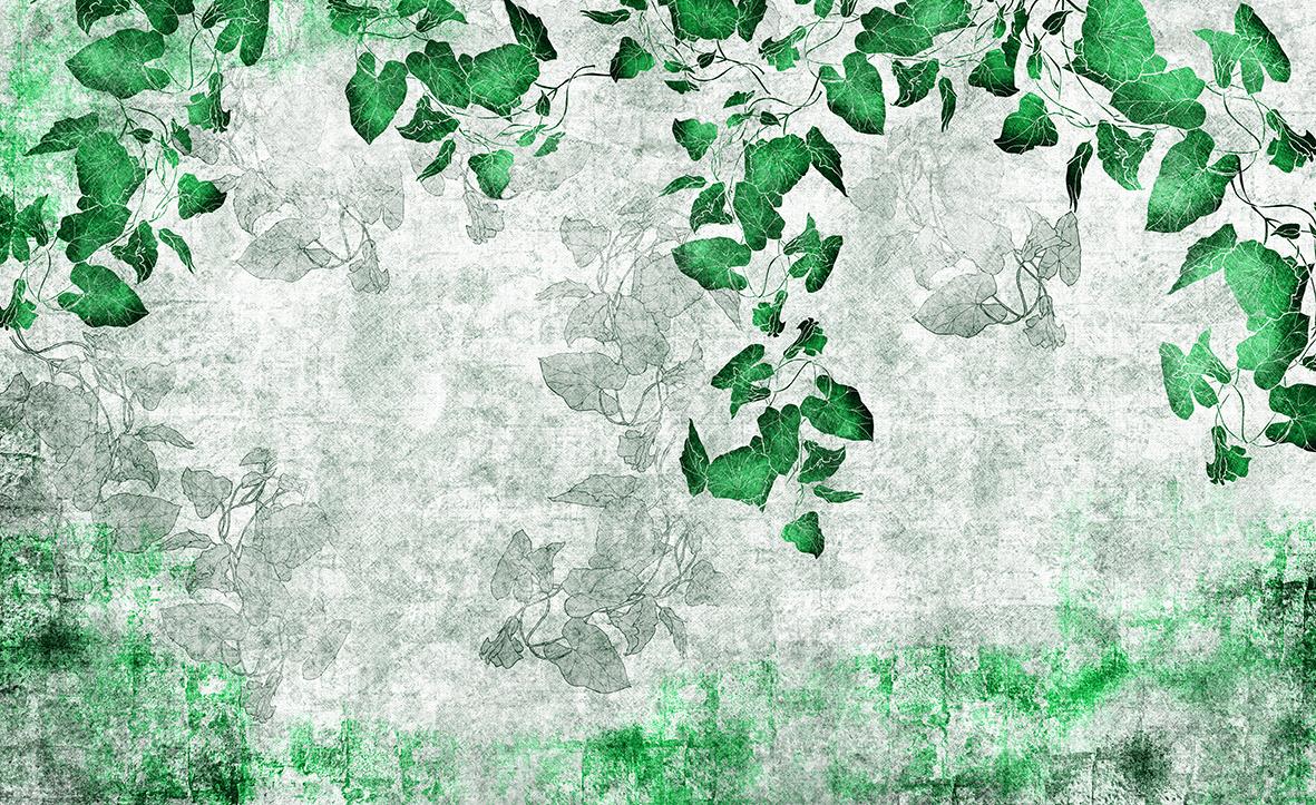 Skinwall Dream Wallpaper Growing Ivy C