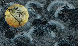 https://www.skinwall.it/wp-content/uploads/2018/02/102_Moon_-40x25-1024x615.jpg